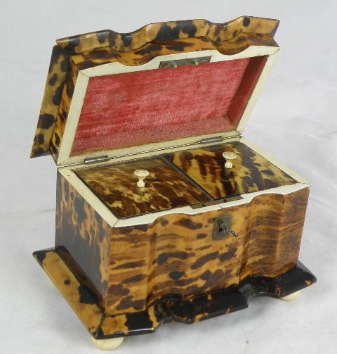 AN EARLY VICTORIAN TORTOISESHELL TEA CADDY having casket top with brass tablet, double channelled front, twin lidded compartmented interior, raised on four possibly later ivory bun feet, 15cm x 18c,
