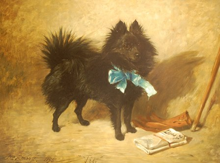 JOHN EMMS (1843-1912) A Pomeranian, oil on canvas, signed and inscribed Fitz, dated 1895, 49cm by 66cm  illustrated