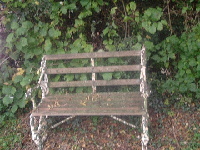 A CAST IRON AND WOODEN SLATTED TWO SEATER GARDEN BENCH