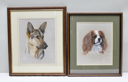 KEVIN HUNT A portrait study of an Alsatian, a Pastel, signed, titled and dated 1989, 32.5cm x 26.5cm, and a SIMILAR STUDY of a Cavalier King Charles Spaniel, signed, titled and dated, 30cm x 25cm, each in slender plain frames (2)