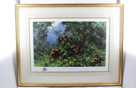 AFTER DAVID SHEPHERD Men of the Woods - Orangutans, a limited edition coloured Print no. 574/950, signed in pencil on mount, 50cm x 75cm in gilt glazed frame