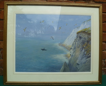 GEORGE LODGE Freshwater Cliffs Isle of Wight, with a Peregrine being mobbed by Herring Gulls, Tempera medium, signed, originally sold at Tryon & Moorland Gallery, Cork Street, London 26th April 1989, catalogue no. 33, exhibited R.A. 1900, sold for £8500 (sold with original exhibition catalogue), 65cm x 49cm in gilt glazed frame