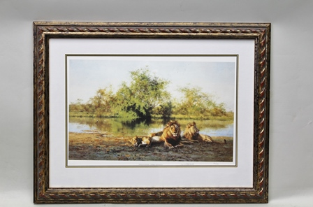 AFTER DAVID SHEPHERD African Evening - Zambezi Waterhole, depicting a lion family, limited edition colour Print (950), signed and numbered in pencil, published by Solomon & Whitehead with blind stamp, each 40cm x 61.25cm mounted in an elaborategilt and ochre hand finished rope twist frame