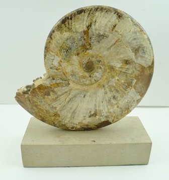 A POLISHED AMMONITE, mounted upon a stone base, overall height 28cm