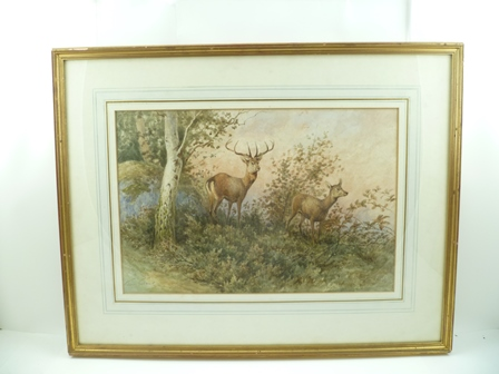GEORGES GASSIES (1829-1919) A Stag and Hind in a woodland scape, a Watercolour, signed, 31cm x 47cm mounted in a gilt glazed frame