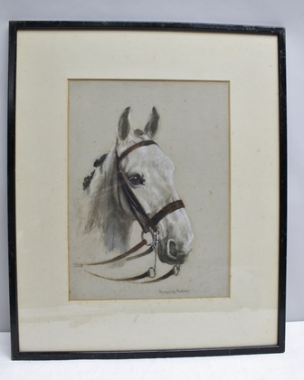 LUCY MARGUERITE FROBISHER (EX.1916-1940) Portrait study of a Grey Hunter, watercolour heightened with white, signed, mounted in a glazed ebonised frame, 35cm x 26.25cm